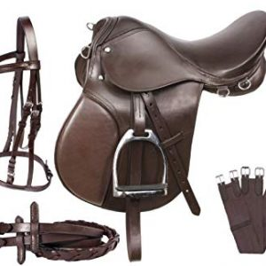 Saddlery and Tack